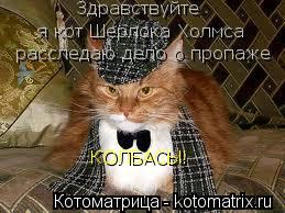 Котоматрица: Здравствуйте    я кот Шерлока Холмса   расследаю дело о пропаже КОЛБАСЫ!