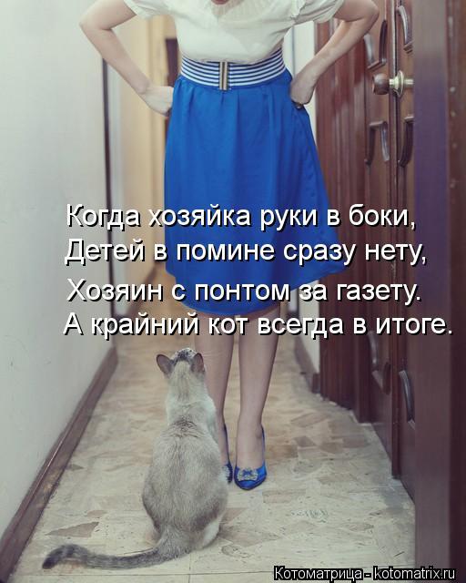 Котоматрица: Когда хозяйка руки в боки, А крайний кот всегда в итоге. Детей в помине сразу нету, Хозяин с понтом за газету.