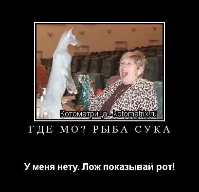 Котоматрица: Где моя рыба сука У меня нету. Лож показывай рот!