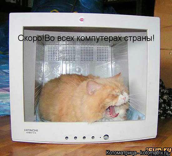 Котоматрица: Скоро!Во всех компутерах страны!