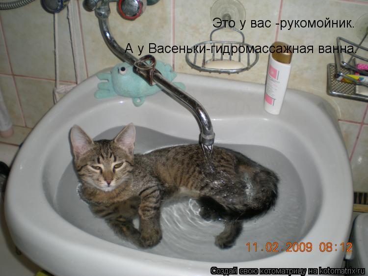Котоматрица: Это у вас -рукомойник. А у Васеньки-гидромассажная ванна.