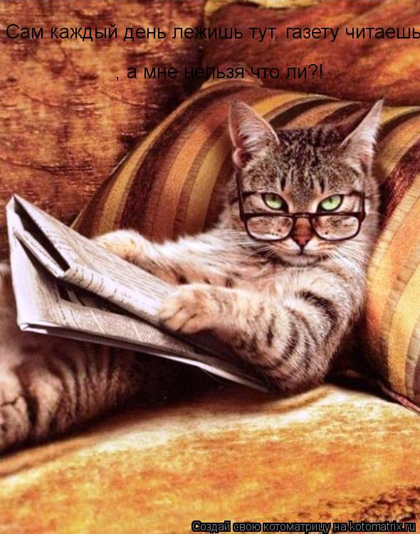 Котоматрица: Сам каждый день лежишь тут, газету читаешь, а мне нельзя что ли?! , а мне нельзя что ли?!