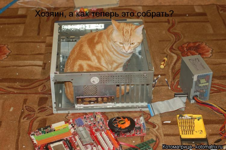Котоматрица: Хозяин, а как теперь это собрать?