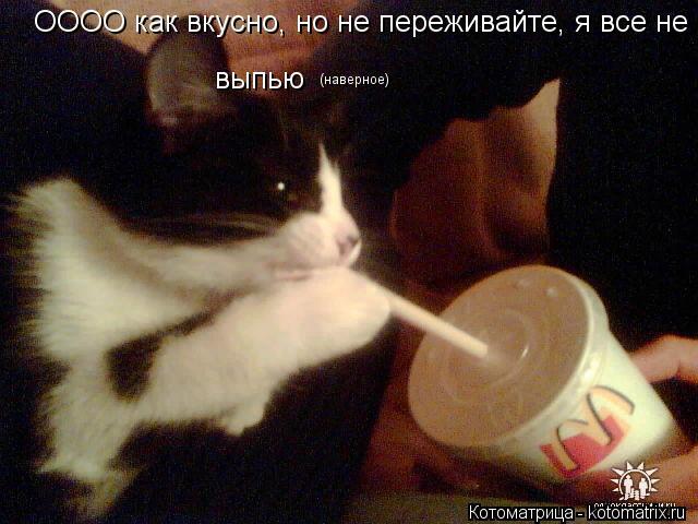 Котоматрица: ОООО как вкусно, но не переживайте, я все не выпью  (наверное)