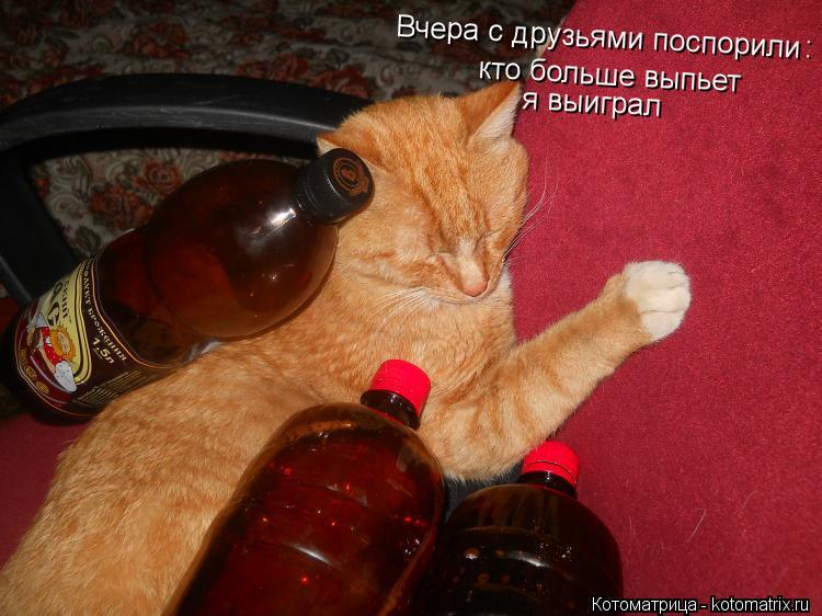 Котоматрица: Вчера с друзьями поспорили : кто больше выпьет я выиграл