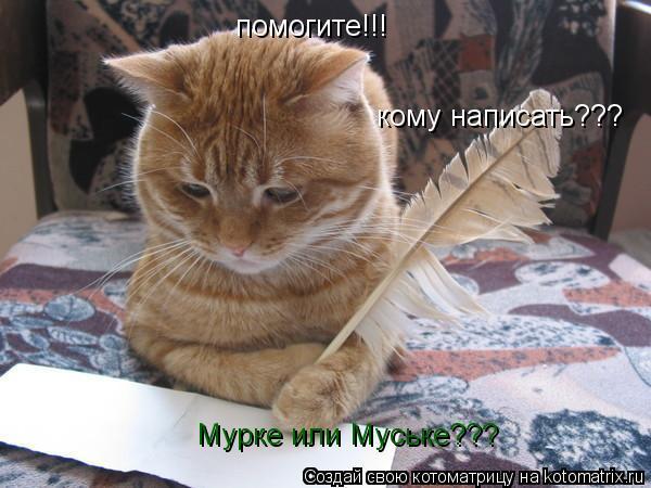 Котоматрица: помогите!!! кому написать??? Мурке или Муське???