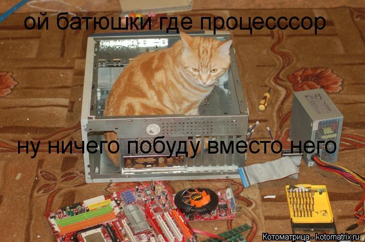Котоматрица: ой батюшки где процесссор ну ничего побуду вместо него