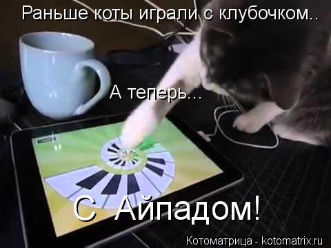 Котоматрица: Раньше коты играли с клубочком.. А теперь... С  Айпадом!