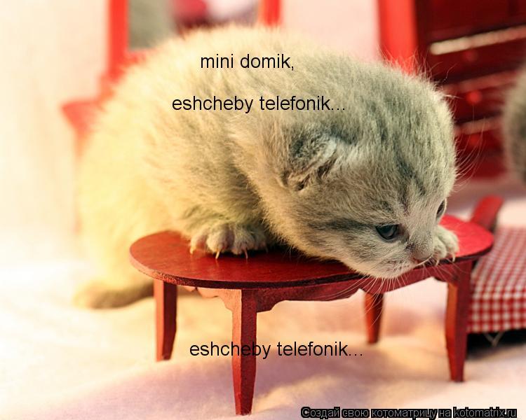 Котоматрица: mini domik, mini domik, mini domik, eshcheby telefonik... eshcheby telefonik...