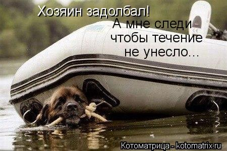 Котоматрица: Хозяин задолбал! Сам в лодке спит, а мне охраняй что бы течение не унесло... А мне следи чтобы течение  не унесло...