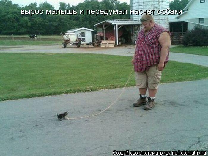 Котоматрица: вырос малышь и передумал насчет собаки