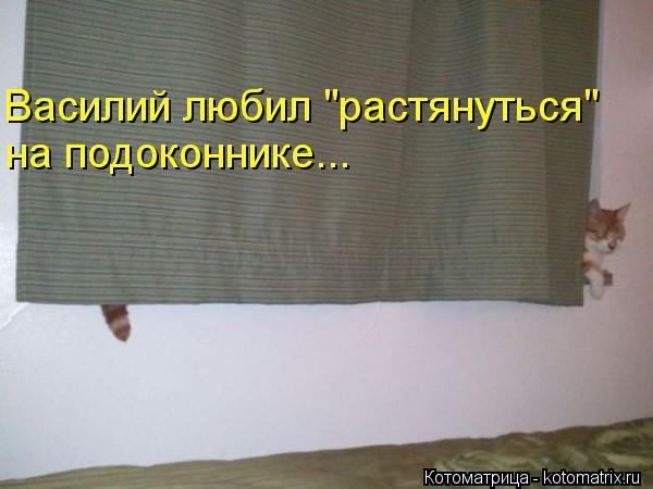 "Котоматрица: Василий любил ""растянуться"" на подоконнике..."