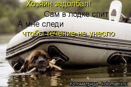 Котоматрица: Сам в лодке спит А мне следи чтобы течение не унесло Хозяин задолбал!