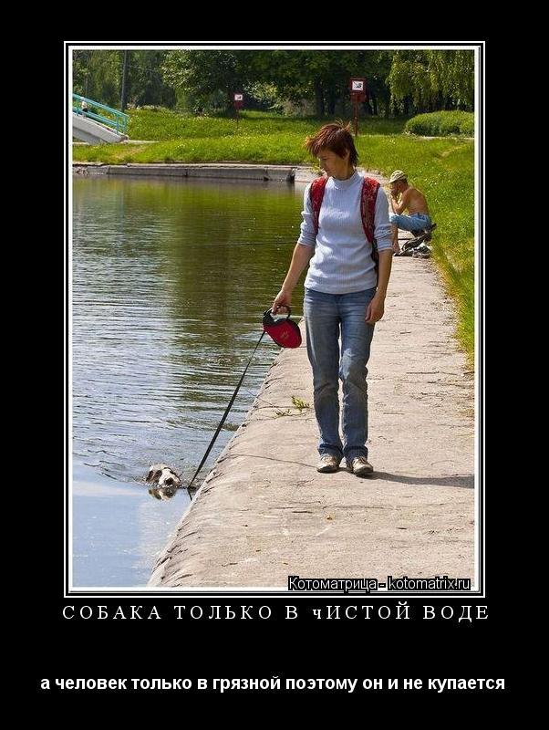 Котоматрица: собака только в чистой воде а человек только в грязной поэтому он и не купается