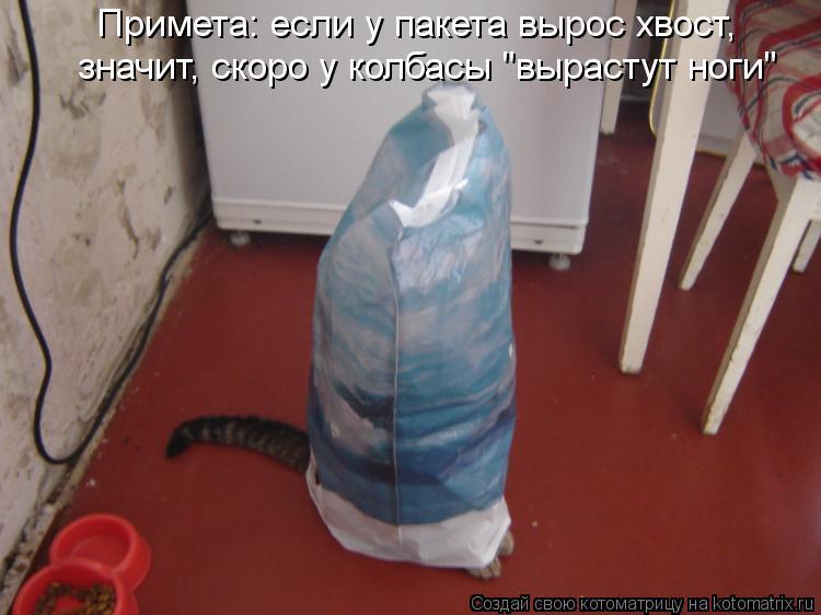 """Котоматрица: Примета: если у пакета вырос хвост, значит, скоро у колбасы """"вырастут ноги"""""""