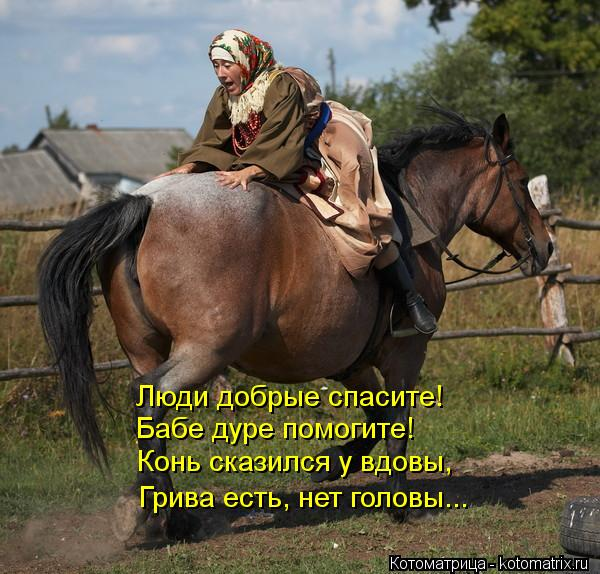 Котоматрица: Люди добрые спасите! Бабе дуре помогите! Конь сказился у вдовы, Грива есть, нет головы...