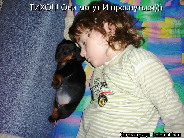 Котоматрица: ТИХО!!! Они могут И проснуться)))