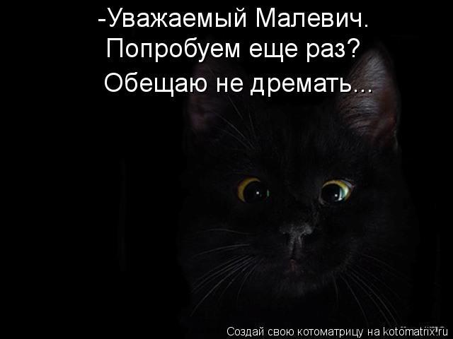 Котоматрица: -Уважаемый Малевич.  Попробуем еще раз? Обещаю не дремать...