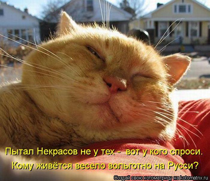 Котоматрица: Пытал Некрасов не у тех -  вот у кого спроси. Кому живётся весело вольготно на Русси?