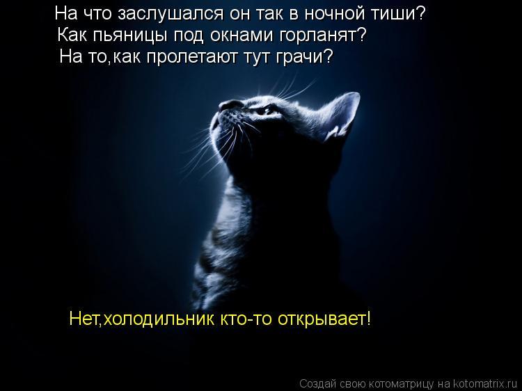Котоматрица: На что заслушался он так в ночной тиши? Как пьяницы под окнами горланят? На то,как пролетают тут грачи? Нет,холодильник кто-то открывает!
