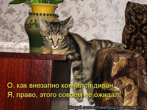 Котоматрица: О, как внезапно кончился диван, Я, право, этого совсем не ожидал!