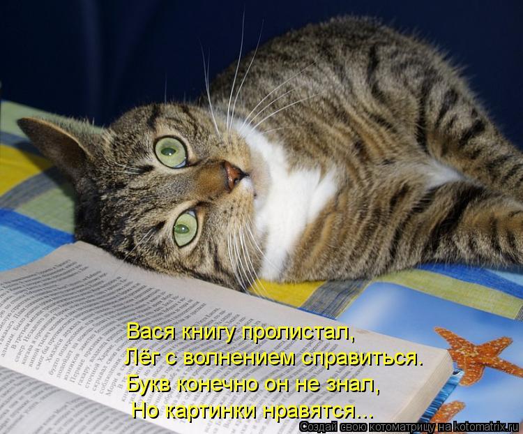 Котоматрица: Вася книгу пролистал, Лёг с волнением справиться. Букв конечно он не знал, Но картинки нравятся...
