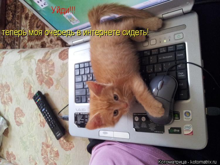 Котоматрица: Уйди!!! теперь моя очередь в интернете сидеть!