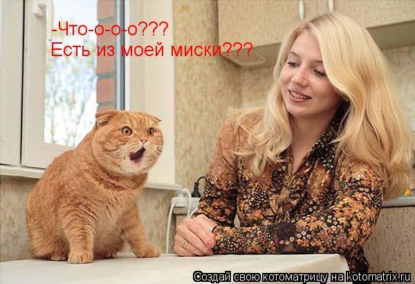 Котоматрица: -Что-о-о-о??? Есть из моей миски???