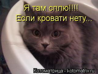 Котоматрица: Я там сплю!!!! Если кровати нету...