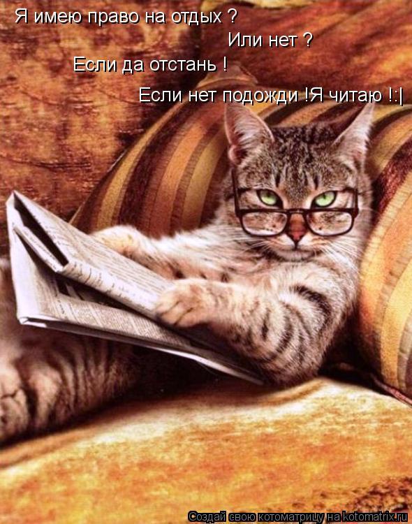 Котоматрица: Я имею право на отдых ? Или нет ? Если да отстань ! Если нет подожди !Я читаю !:|