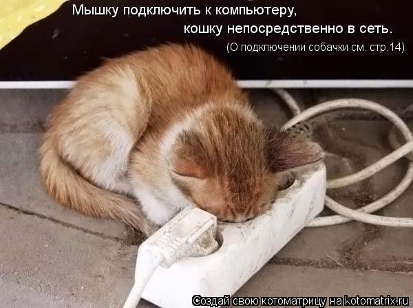 Котоматрица: Мышку подключить к компьютеру, кошку непосредственно в сеть. (О подключении собачки см. стр.14)