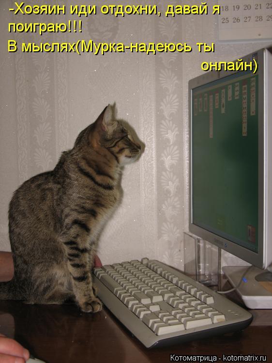 Котоматрица: -Хозяин иди отдохни, давай я  поиграю!!! В мыслях(Мурка-надеюсь ты  онлайн)