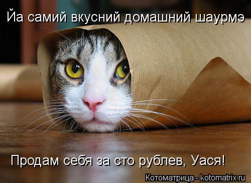 Котоматрица: Йа самий вкусний домашний шаурмэ Продам себя за сто рублев, Уася!