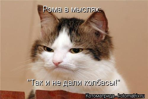 """Котоматрица: Рома в мыслях: """"Так и не дали колбасы!"""""""