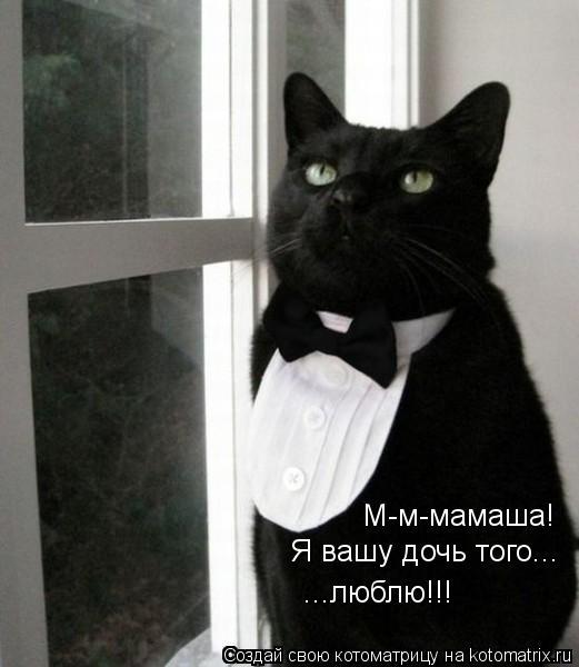 Котоматрица: М-м-мамаша! Я вашу дочь того... ...люблю!!!