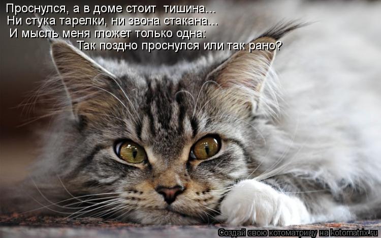 Котоматрица: Проснулся, а в доме стоит  тишина... Ни стука тарелки, ни звона стакана... И мысль меня гложет только одна: Так поздно проснулся или так рано?
