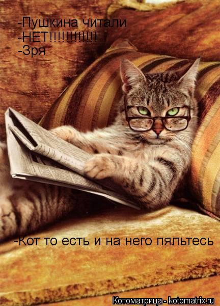 Котоматрица: -Пушкина читали -НЕТ!!!!!!!!!!!! -Зря -Кот то есть и на него пяльтесь