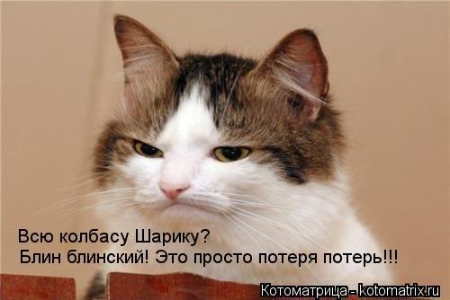 Котоматрица: Блин блинский! Это просто потеря потерь!!! Всю колбасу Шарику?