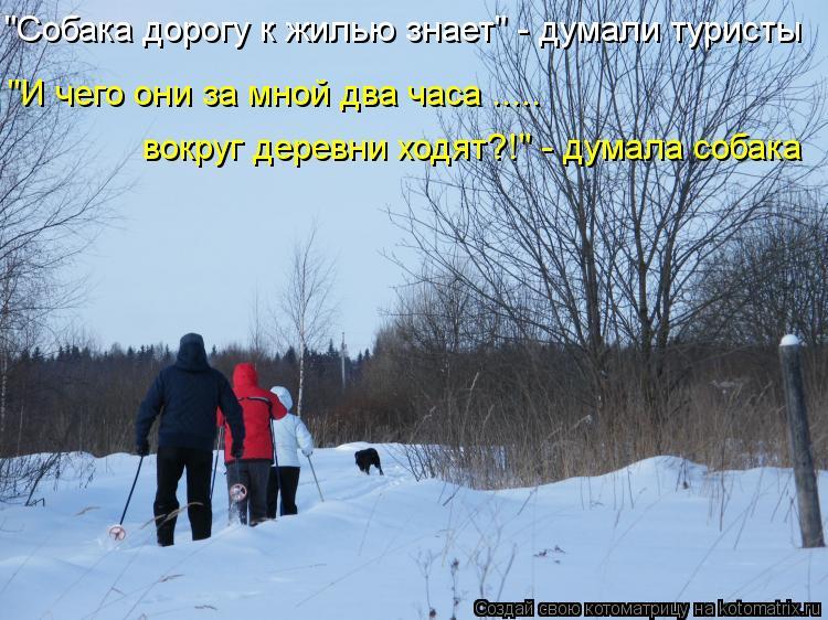 """Котоматрица: """"Собака дорогу к жилью знает"""" - думали туристы """"И чего они за мной два часа ..... вокруг деревни ходят?!"""" - думала собака"""