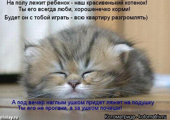 Котоматрица: На полу лежит ребенок - наш красивенький котенок!  Будет он с тобой играть - всю квартиру разгромлять)  Ты его всегда люби, хорошенечко корми!