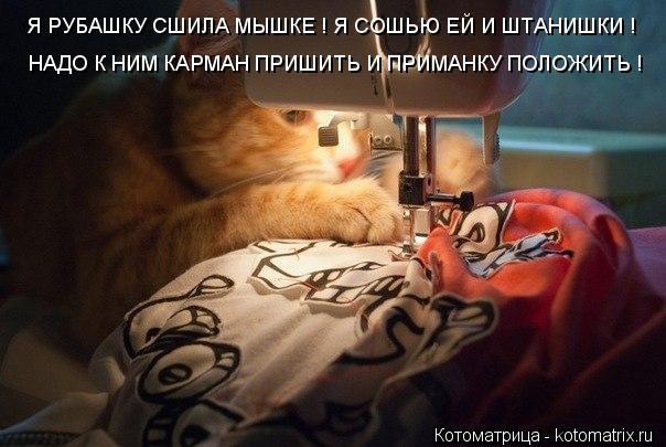 Котоматрица: Я РУБАШКУ СШИЛА МЫШКЕ ! Я СОШЬЮ ЕЙ И ШТАНИШКИ ! НАДО К НИМ КАРМАН ПРИШИТЬ И ПРИМАНКУ ПОЛОЖИТЬ !