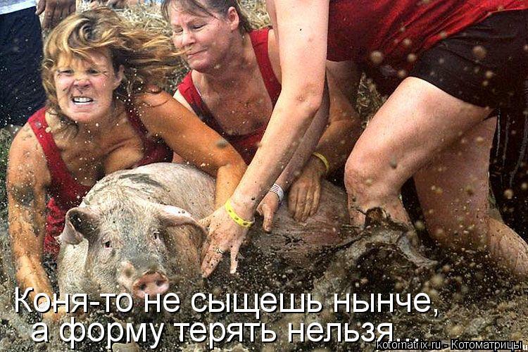 Котоматрица: Коня-то не сыщешь нынче, а форму терять нельзя...