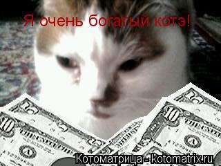 Котоматрица: Я очень богатый котэ!