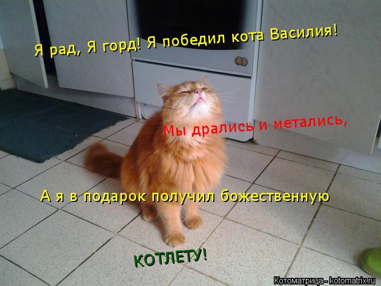 Котоматрица: Я рад, Я горд! Я победил кота Василия!  Мы дрались и метались, А я в подарок получил божественную КОТЛЕТУ!