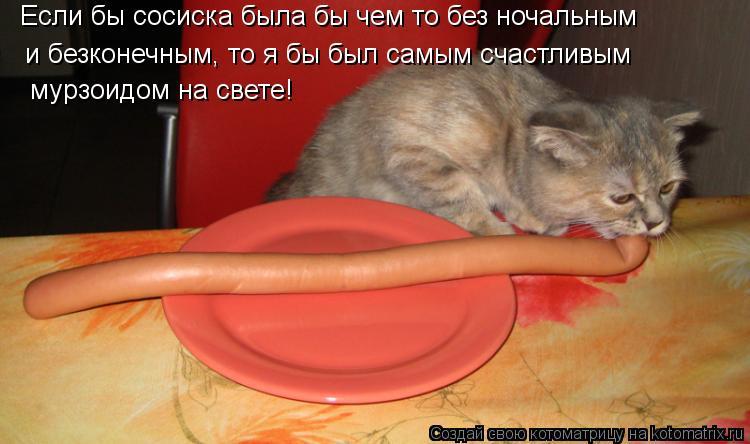 Котоматрица: Если бы сосиска была бы чем то без ночальным и безконечным, то я бы был самым счастливым  мурзоидом на свете!
