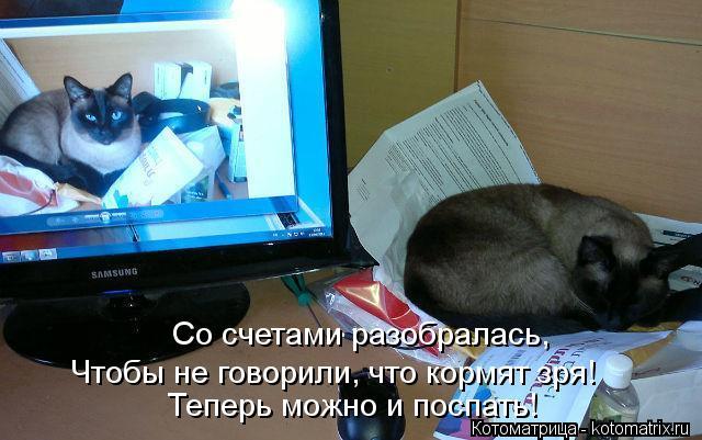 Котоматрица: Со счетами разобралась, Чтобы не говорили, что кормят зря! Теперь можно и поспать!