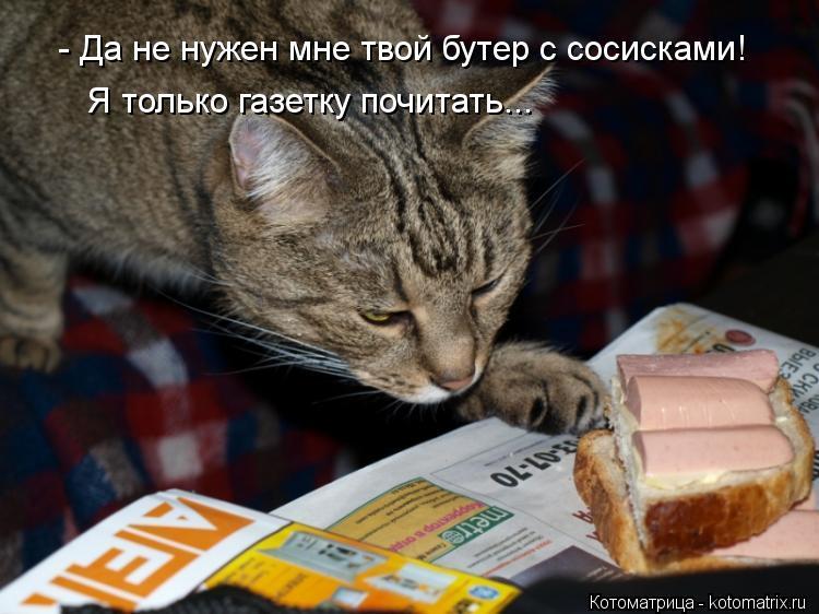 Котоматрица: - Да не нужен мне твой бутер с сосисками! Я только газетку почитать...