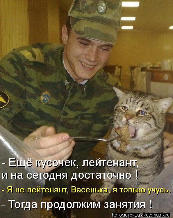 Котоматрица: - Ещё кусочек, лейтенант,  и на сегодня достаточно ! - Я не лейтенант, Васенька, я только учусь. - Тогда продолжим занятия !