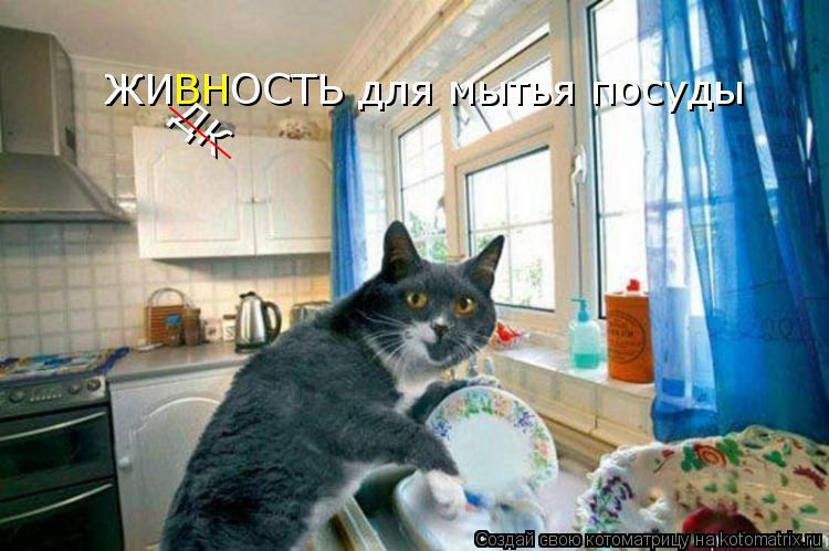 Котоматрица: ЖИ ВН ОСТЬ для мытья посуды ДК ___