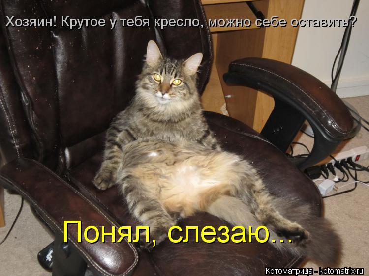 Котоматрица: Хозяин! Крутое у тебя кресло, можно себе оставить? Понял, слезаю...
